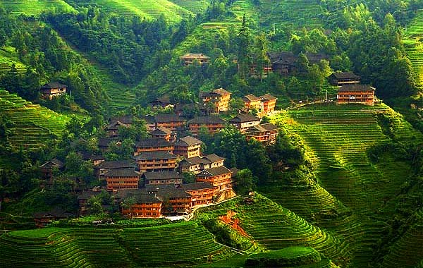 Terraces in Gualin China