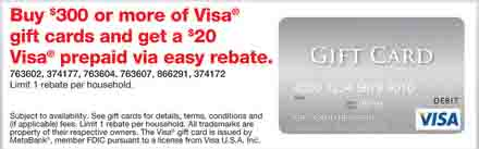 Staples 300 Visa